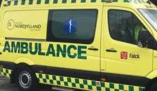 Uheld på motorvej med krondyr