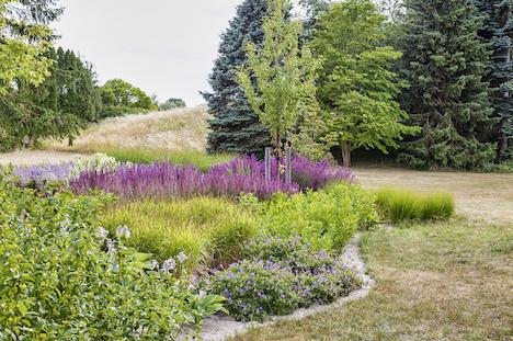 Plant dine stauder i grus – og slip for ukrudt og tørkeplagede blomster