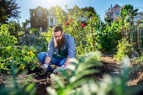 Lige så godt som en tur i fitness: Sådan påvirker havearbejdet din krop