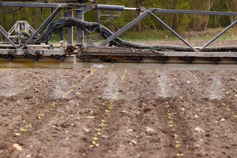 Præcision i landbruget kan halvere pesticidforbruget