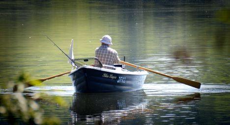 Lystfiskere må igen tage fisk med hjem fra sygdomsramte områder