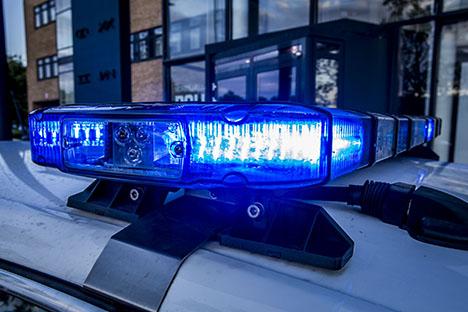 Færdselsuheld på Randersvej ved Handest | Lastbil påkørte krondyr